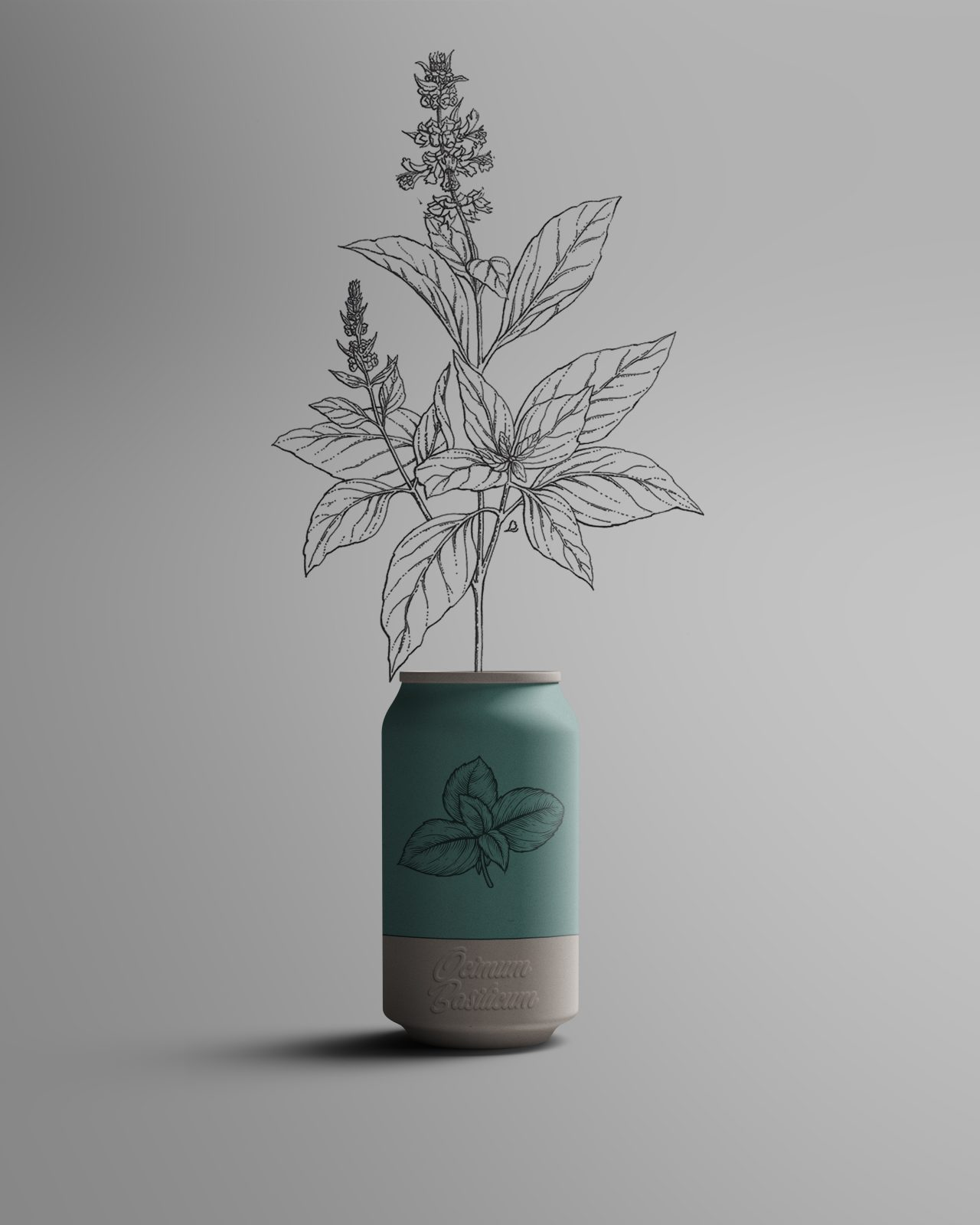 Canature - Packaging Plante bio basilic écoresponsable