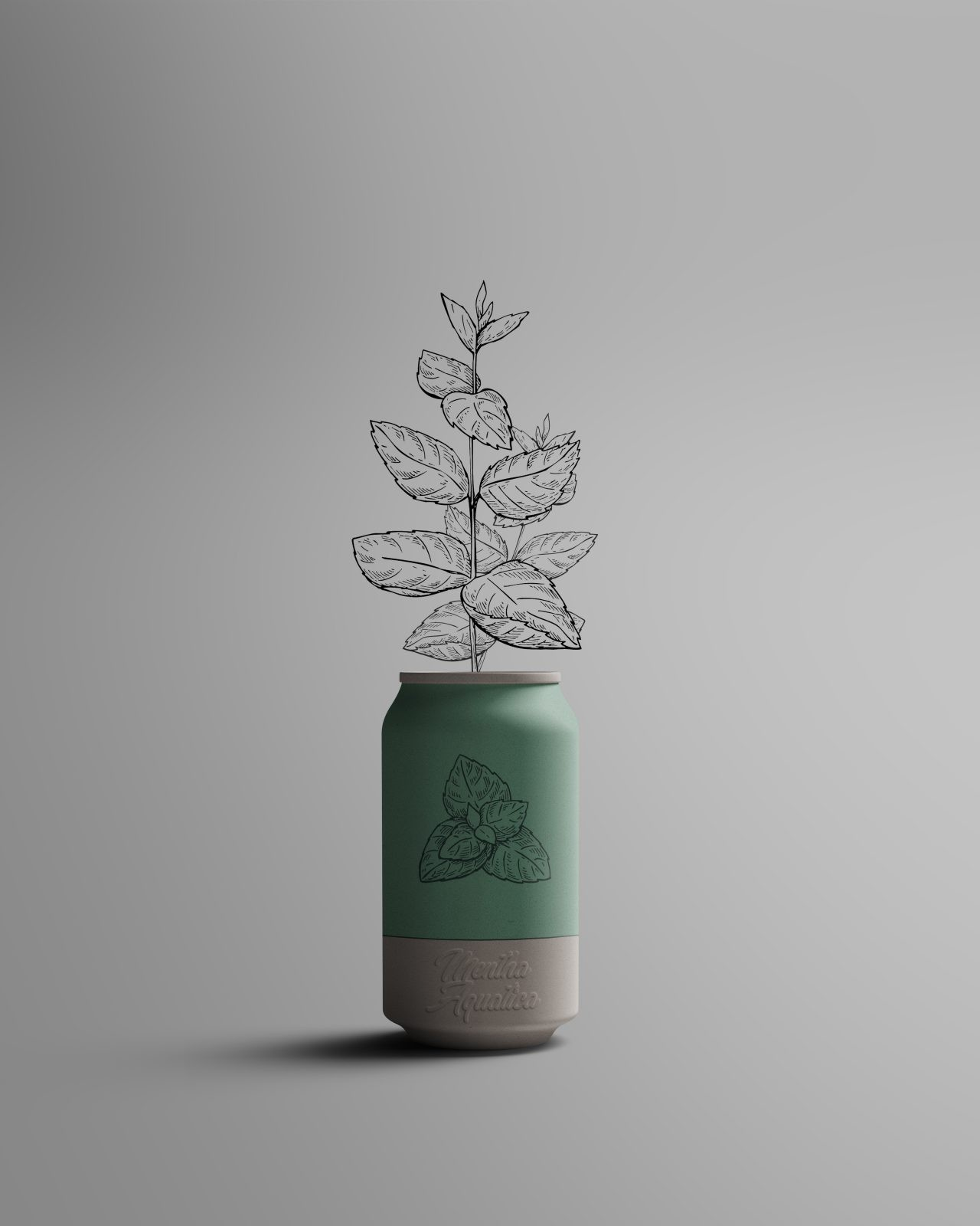 Canature - Design Packaging Plante bio menthe